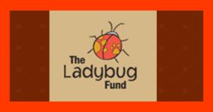 Ladybug Fund
